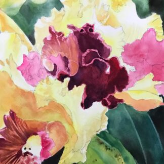 Orchid in Watercolor